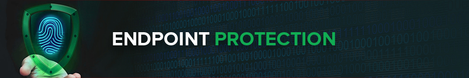What is Endpoint Protection?
