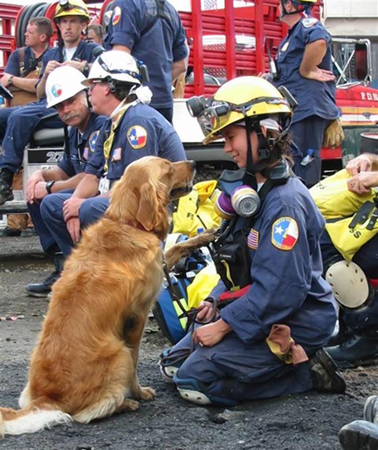 Comodo Remembers 911